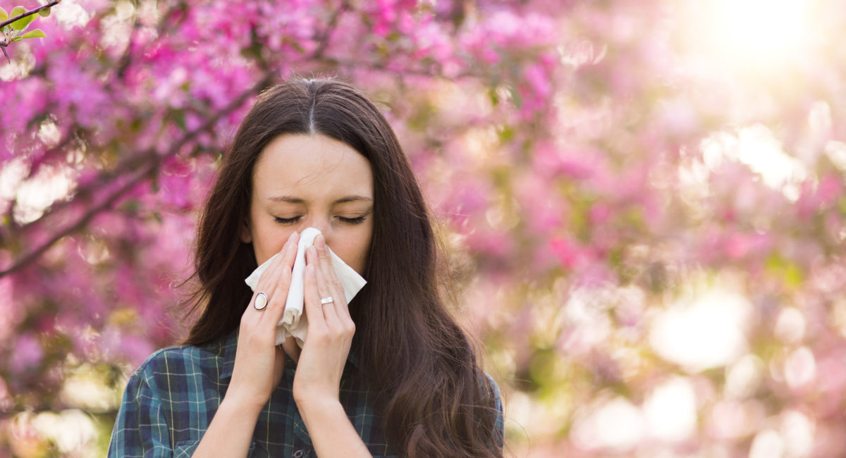 riniti allergiche