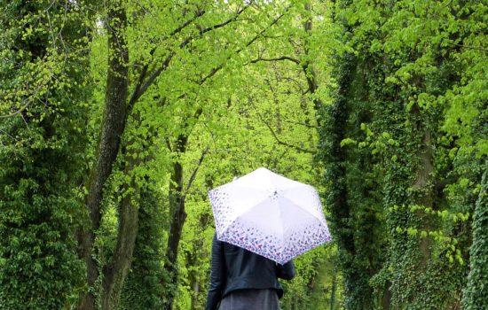pioggia zona comfort