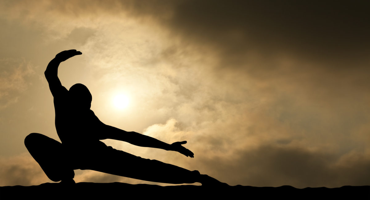 Budôkon yoga