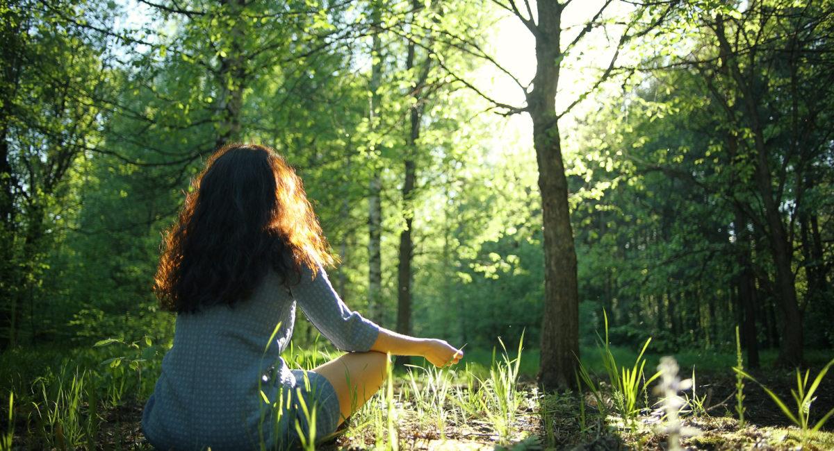shinrin yoku meditazione