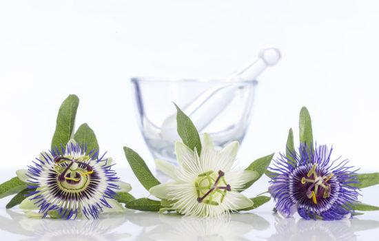 passiflora fitoterapia
