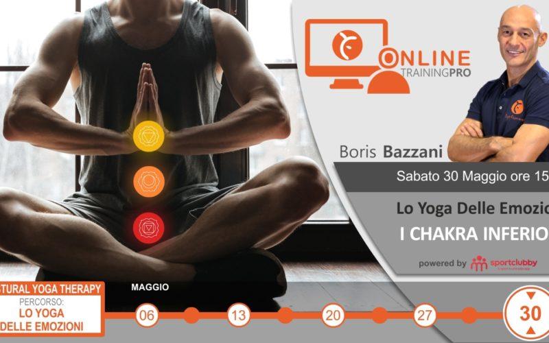 bazzani workshop