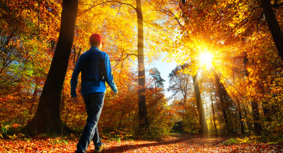 natura passeggiare